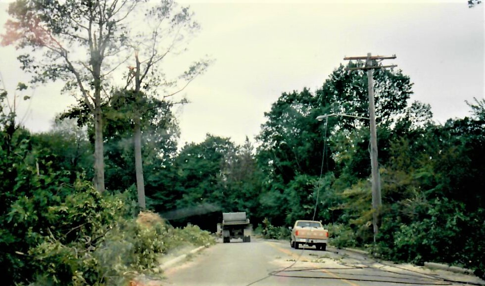 Storm of 1993